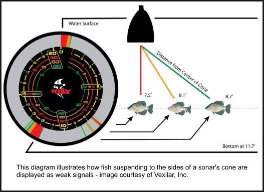 Ice more fish by understanding sonar for How to read fish finder
