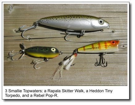 three foolproof topwater tactics for smallmouth bass, Hard Baits