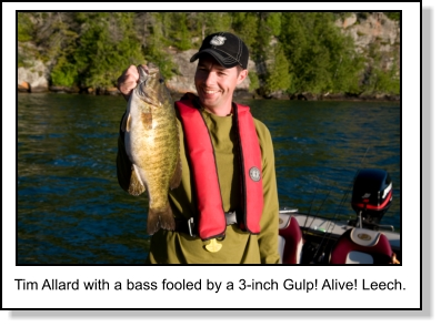 Downsizing Tactics for Smallmouth Bass
